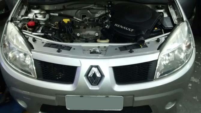 O Renault Sandero 1.6 16V 2009 que foi invadido por um rato